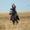 Катание на лошадях #1031882