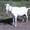 Зааненские козы #1275516
