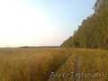 Земельный участок 1 гектар для дачного строительства в д. Натальинка