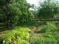 Земельный участок в Тульской области