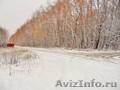 Продам садовый участок 4380 соток в д. Александровка - Заокский Район, Объявление #1597554