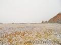 Продам садовый участок 4380 соток в д. Александровка - Заокский Район - Изображение #4, Объявление #1597554