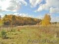 Большой участок в деревне Скрипово - Заокский район - Изображение #2, Объявление #1596476